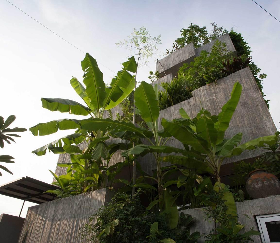 Agricultura urbană: producția de alimente în parcurile comunitare și grădinile privat